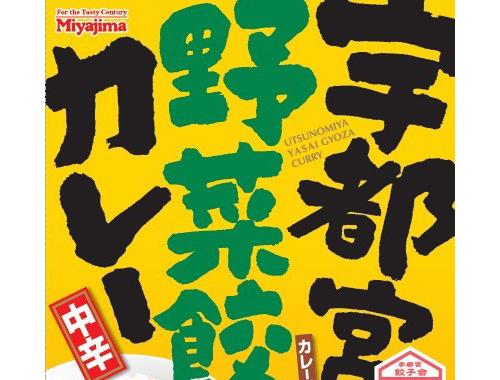 宇都宮餃子に合うカレーはタレの味?のイメージ